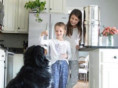 Berkey Water Filter Customer Review